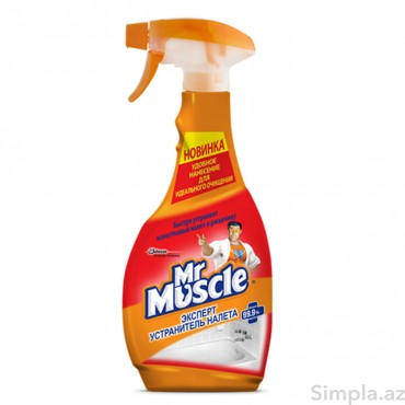 Mr.Muscle Ərpə qarşı Ekspert 500ml
